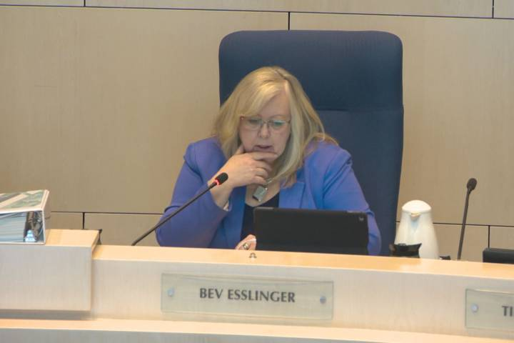 Councillor launches plan to end gender-based violence in Edmonton