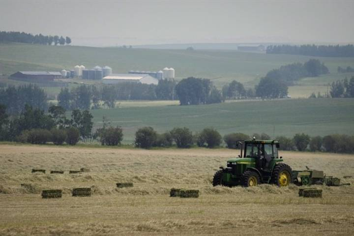 Final phase of Alberta farm worker safety bill takes effect December 1