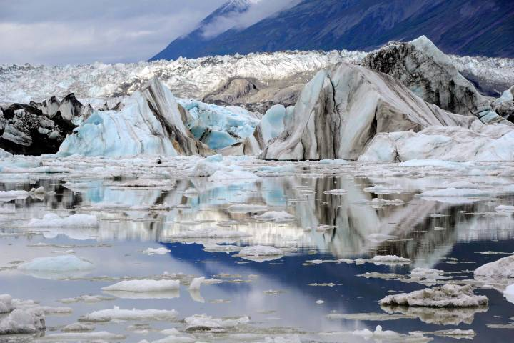 80% of B.C., Alberta glaciers will disappear in next 50 year: expert