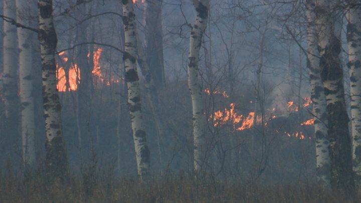 Heavy winds, downed power lines to blame for Pincher Creek fires: chief