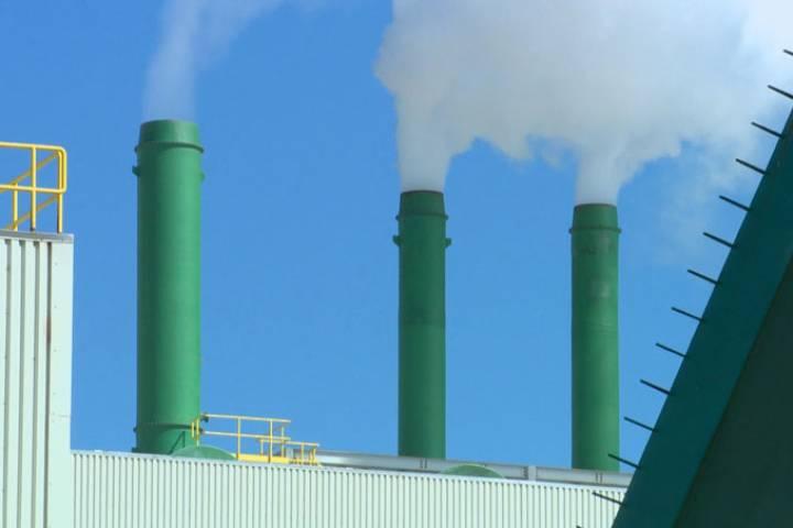 UCP, Suzuki Foundation granted intervenor status in Saskatchewan carbon tax challenge