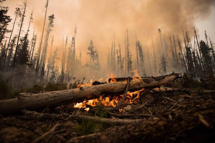 Inhaling smoke from wildfires equal to smoking a few packs a day: researcher