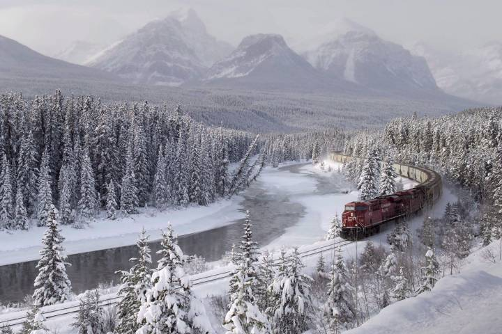 Train derailment site in Banff National Park could attract hungry grizzlies: Parks Canada