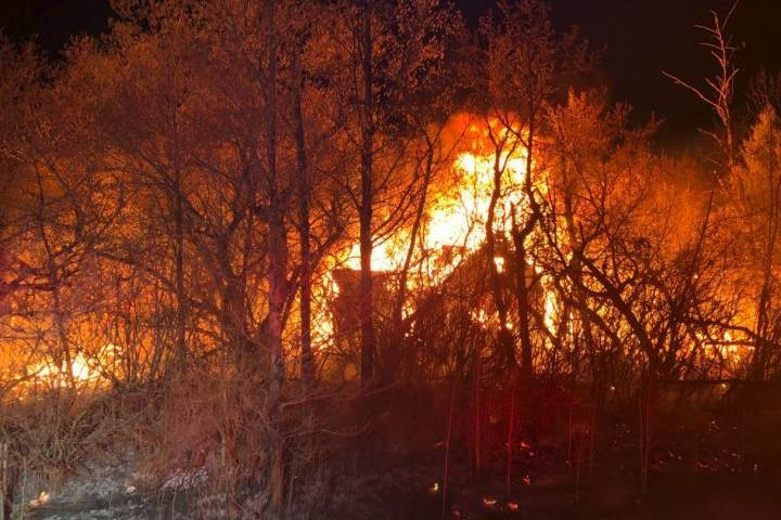 3 buildings destroyed as wind pushes Strathcona County fire into brush