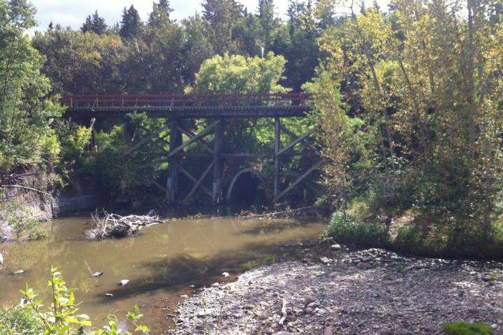 Mill Creek Ravine daylighting being pushed by Edmonton city councillor