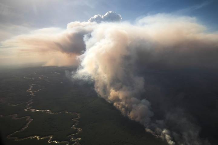 Years of fire suppression contributing to increasing Alberta wildfires: expert