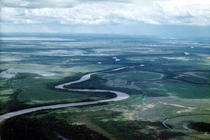 UN says Canada's plan to rescue Wood Buffalo National Park needs 'considerably more effort'