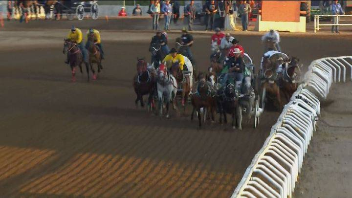 Horses crash into fence at Calgary Stampede's 'half mile of hell'