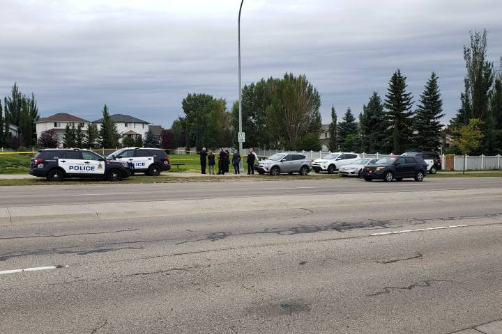 Edmonton homicide police investigating discovery of body