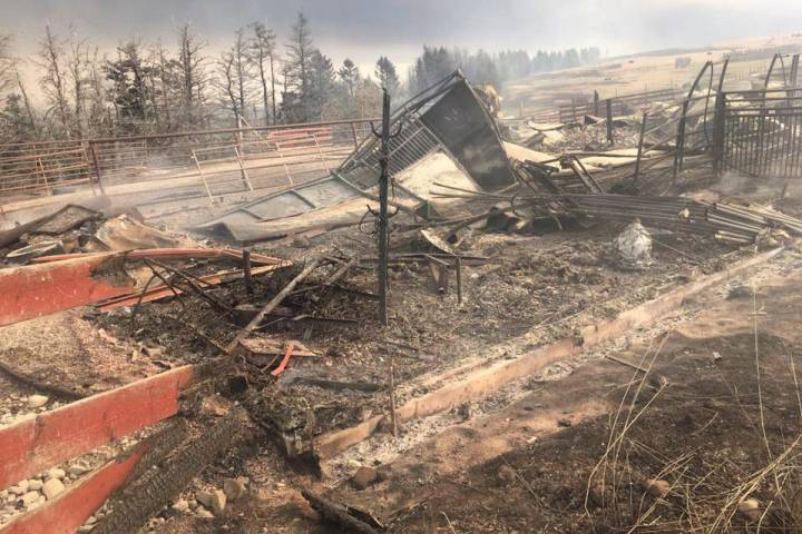 Southern Alberta's Rocking Heart Ranch still rebuilding 2 years after Waterton wildfire