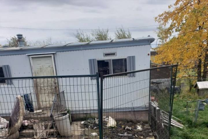 Alberta SPCA investigates dogs in distress at Swan Hills property