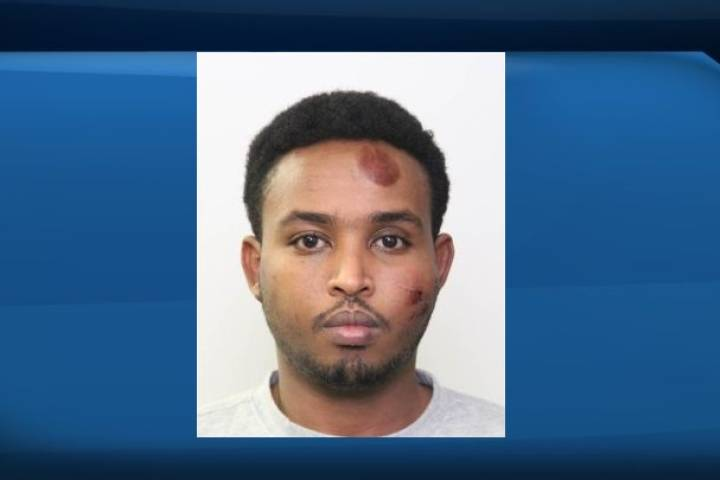 Jury selected for Edmonton man accused of trying to run down, stab police officer