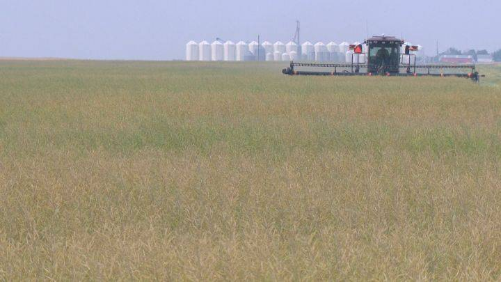 Alberta beefing up penalties for those who trespass on farmers' property
