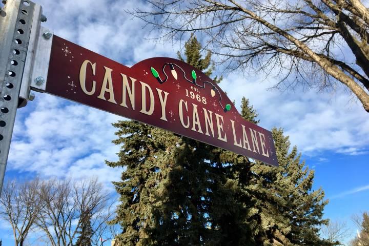 Edmonton's Candy Cane Lane adding car-free night this year