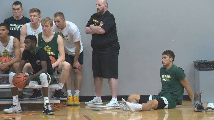Broken foot sidelines Alberta Golden Bears basketball star