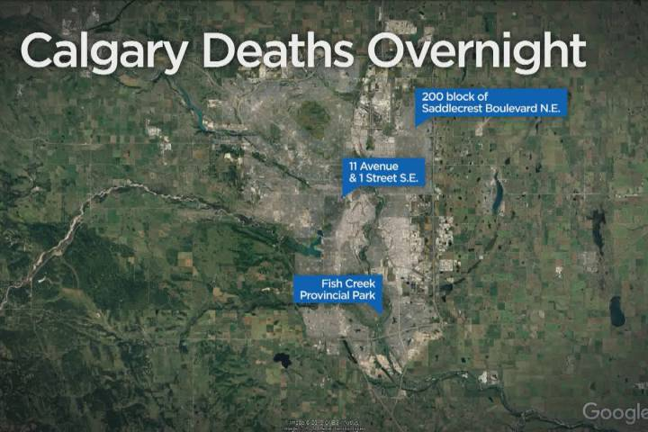 Calgary police resources stretched thin after 3 deaths overnight