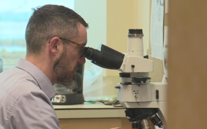 Edmonton scientist part of NASA Mars 2020 rover mission