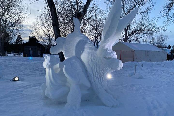 From Silver Skate to Sweden: Red Deer duo captures art in snow