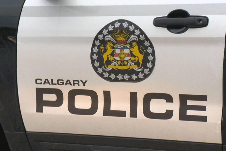 2 men injured in southeast Calgary shooting