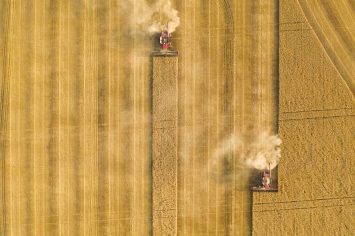 Canada's agriculture sector scrambling to offset consequences of COVID-19 crisis