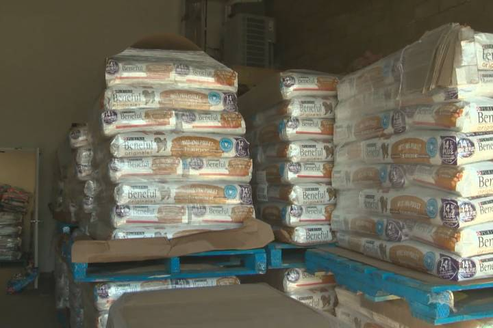 Coronavirus: Albertans unable to afford food for animals are getting much-needed support