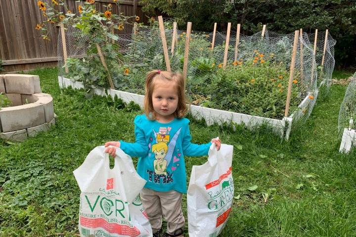 The benefits of growing a garden during the COVID-19 crisis