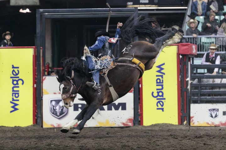 Canadian Finals Rodeo will not take place this year due to COVID-19