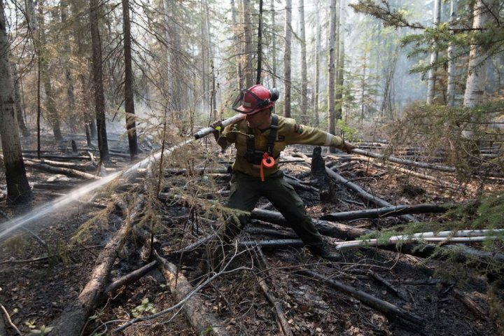 Coronavirus: Is the pandemic contributing to a slower Alberta wildfire season?