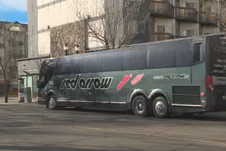 Red Arrow, Ebus service to resume in Alberta with COVID-19 safety measures