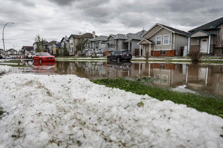 Victims of Calgary hailstorm launch convoy to Edmonton to demand provincial aid