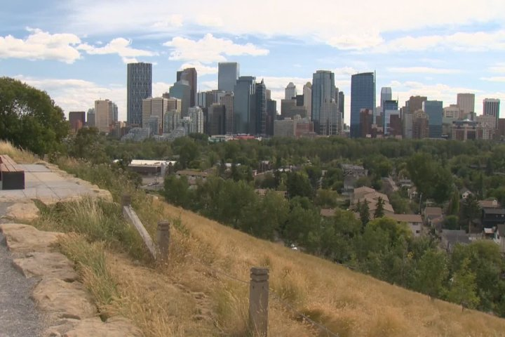 Calgary charity supporting people living with dementia needs vacant office space