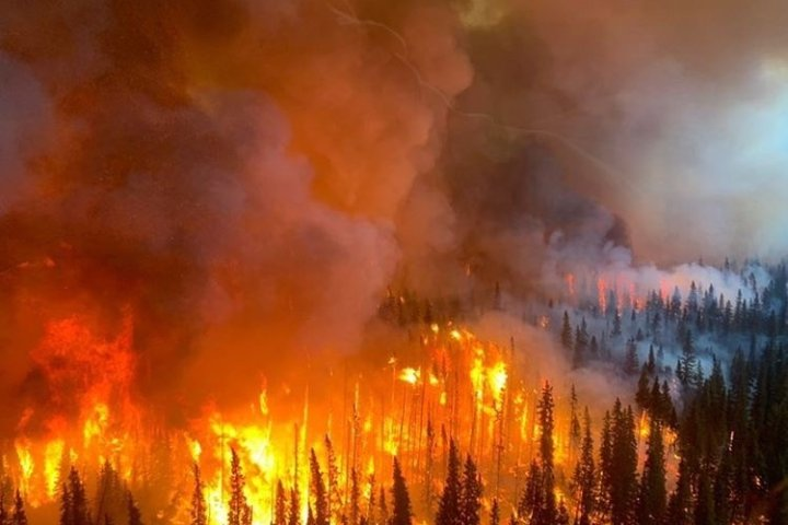 Abandoned campfire caused wildfire near Canmore, Alta.: investigation