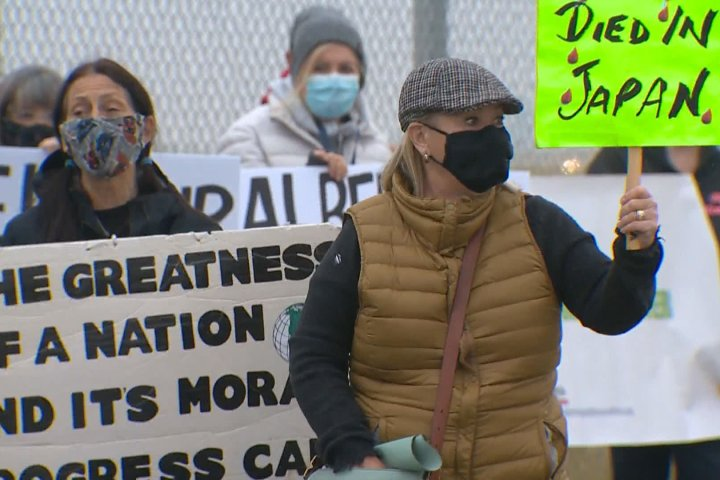Jann Arden among protesters demanding change for live horse trade overseas as shipment departs Calgary
