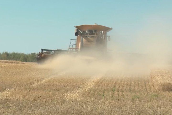 'A lot of positives': Western farmers wrap up harvest early, look to improved prices