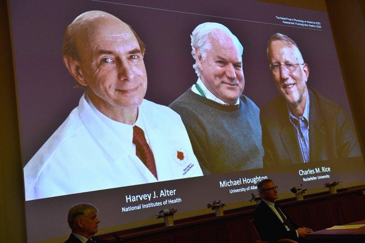 University of Alberta scientist part of trio awarded Nobel Prize in medicine