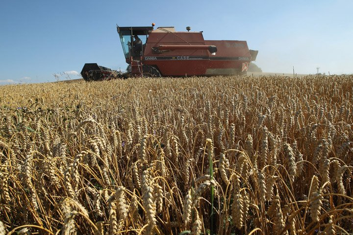 Report shows 70% drop in young and new farmers across Prairies