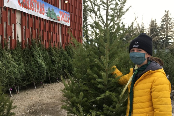 60 years and counting: Calgary scout troop continues tree lot tradition despite COVID-19 pandemic