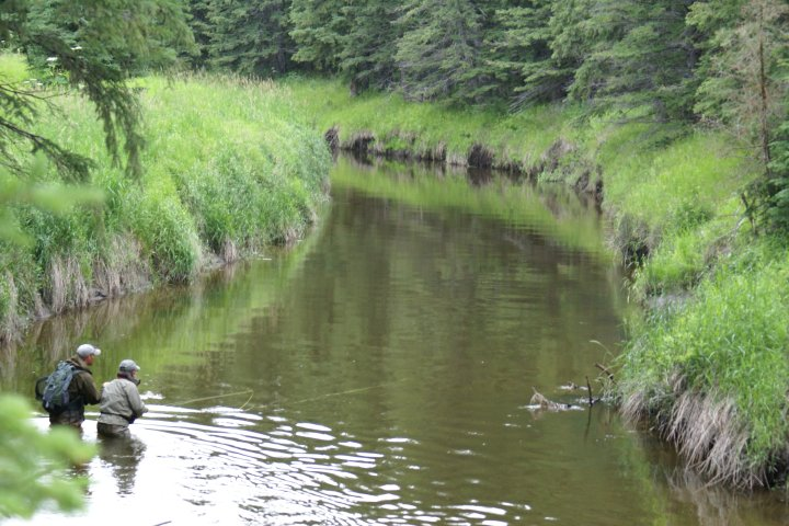 Alberta anglers seek protection for river they say is threatened by gravel plan