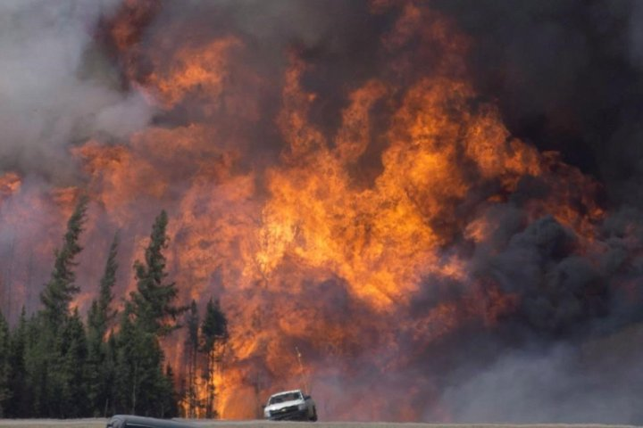 Wildfires take over from industry as major source of cancer-causing air toxins: study
