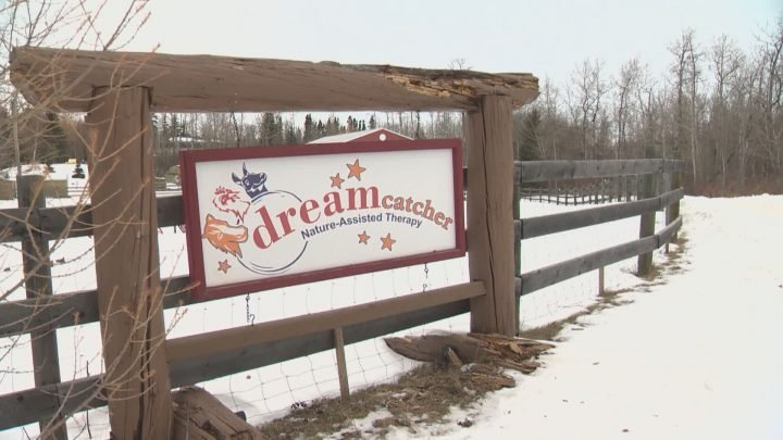 Edmonton-area ranch offering escape for workers on the front lines of COVID-19 pandemic