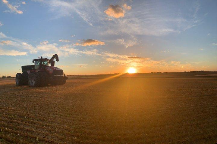 Manitoba grain farmers enjoying recent surge in prices