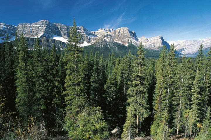 Impact of coal mining in Rocky Mountains on tourism not considered, Alberta official says