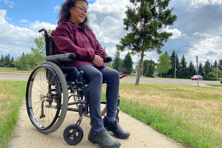 Edmonton woman with disability hopes to get stolen customized van back