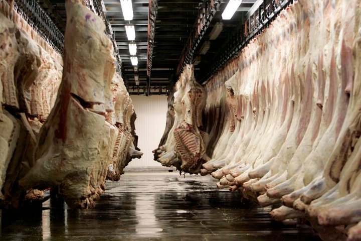 Meat packers call for changes to foreign worker cap to address labour shortage crisis